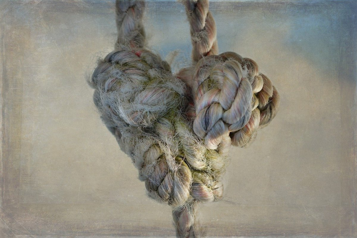 Knots in theCord